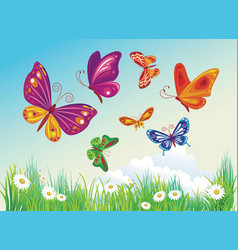 Butterfly on a background of blue sky vector
