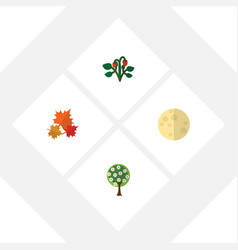 flat icon bio set of lunar tree canadian and vector image