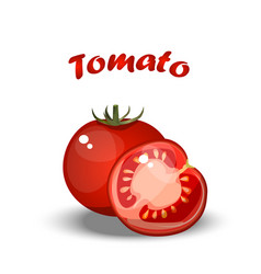 fresh healthy tomato vector image