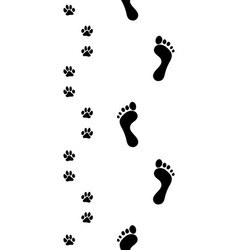 Feet and pawsseamless vector