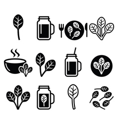 Spinach healthy food - green smoothie icons set vector