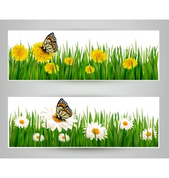 Two banners with butterflies and flowers vector image