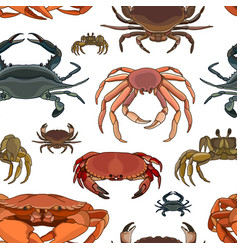 Crabs set pattern vector