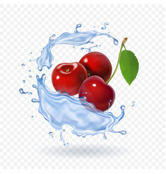 Cherry realistic fruit icon fresh berry vector
