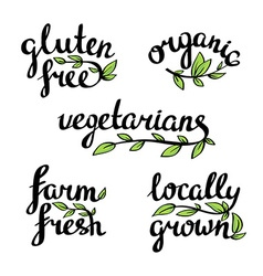 Lettering - organic natural food vegan and vector