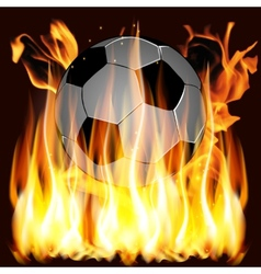 flames and Soccer ball vector image