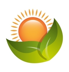 Green leaves or leaf ecology theme vector image