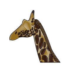 head giraffe animal herbivore african wildlife vector image vector image