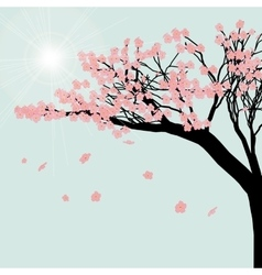 Blooming cherry tree Sakura flowers against the vector image