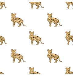 Savannah icon in cartoon style isolated on white vector