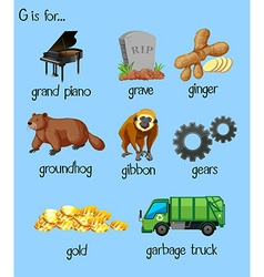 Many words for alphabet g vector