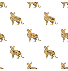 Savannah icon in cartoon style isolated on white vector
