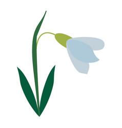 amaryllis flower decorative icon vector image