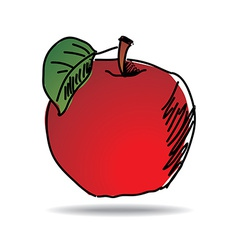Freehand drawing apple icon vector