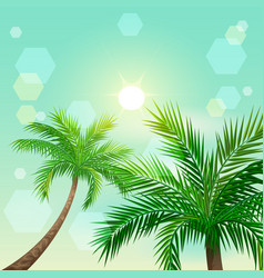 tropical palm trees and sun in zenith vector image