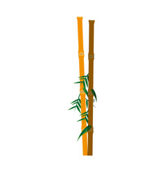 Bamboo plant icon image vector