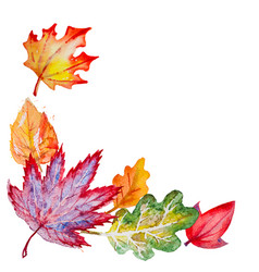 composition with autumn leaves vector image vector image