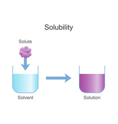 Dissolving solids solubility chemistry vector