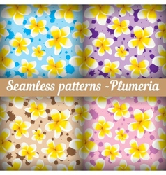 Plumeria Set of seamless patterns Floral vector image vector image
