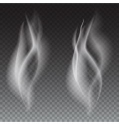 Smoke waves transparent vector image vector image