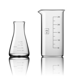 two chemical laboratory glassware or beaker glass vector image vector image