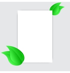 Blank white sheet paper and green fresh spring vector image vector image
