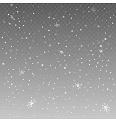 Falling snowflakes on grey background vector image vector image