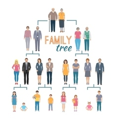 Genealogy tree vector