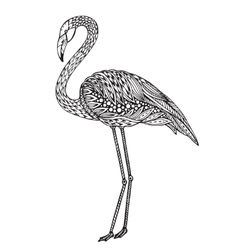 Hand drawn flamingo bird in ornate fancy doodle vector image