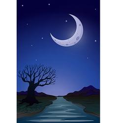 A moonlight view vector