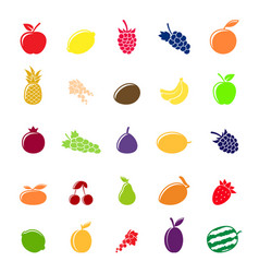 flat colorful fruit silhouettes vector image vector image