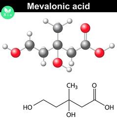 Mevalonic acid molecule vector image vector image