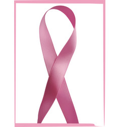 pink ribbon against cancer isolated on white vector image