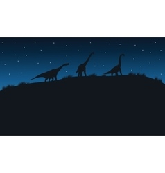 Silhouette of brachiosaurus with star vector image vector image