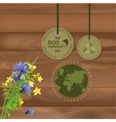 Ecology labels vector