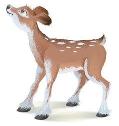 Brown small fawn raised his head up vector