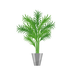 Palm treehouse plant realistic icon for interior vector