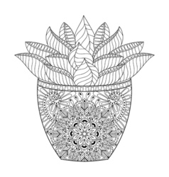Zentangle succulent cactus hand drawn outline vector
