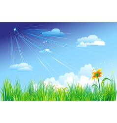 grass on a background of blue sky vector image