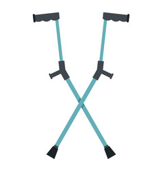 Other crutches icon isolated vector