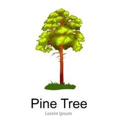 Pine tree with branch and leafs in the wild forest vector