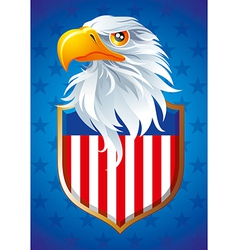 Symbol of usa vector