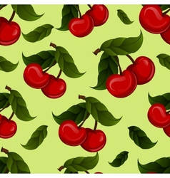 bright jucy fresh cherry fruit Cherries vector image vector image