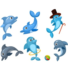 Dolphin set vector