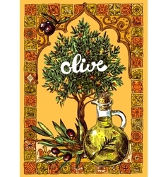 Olive oil and olives vector