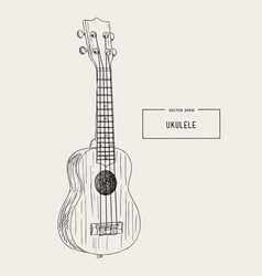 ukulele - hawaiian musical hand drawn sketch vector image vector image