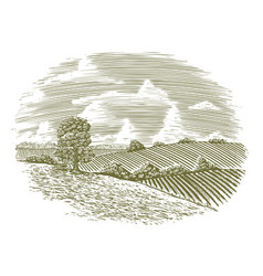 woodcut vintage countryside vector image