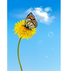 Nature background with butterfly on a yellow vector image