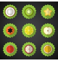 Fruit flat icon set include apple lemon papaya vector