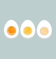 colorful of boiled eggs vector image
